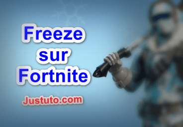 Freeze sur Fortnite